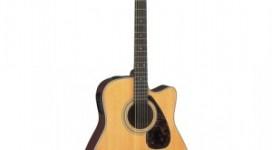 Dan-Acoustic-guitar-Yamaha-FX370C