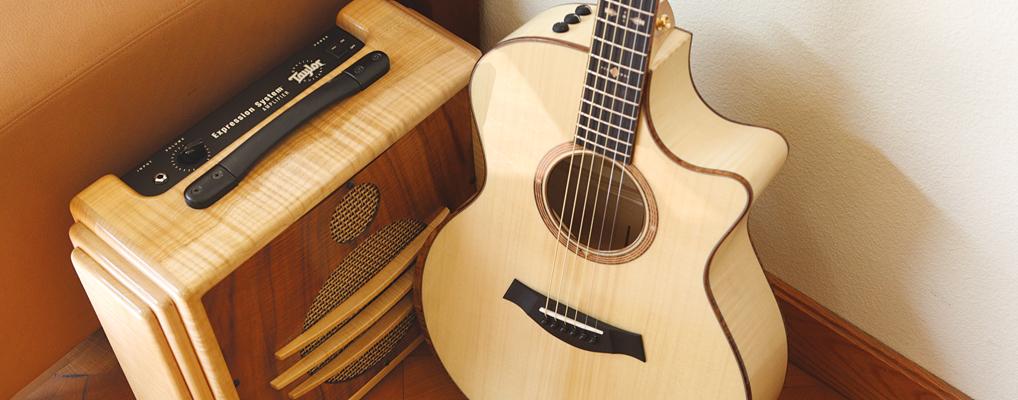 Những cây đàn Guitar không nên mua
